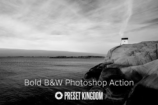 Bold Black & White Photoshop Action