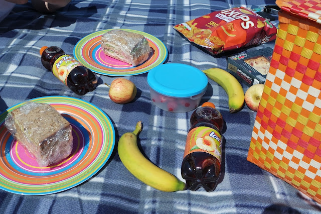 Picnic in the Park - Stewart Park Middlesbrough