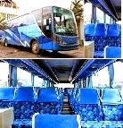 bus 59 seat