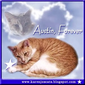 R.I.P Austin