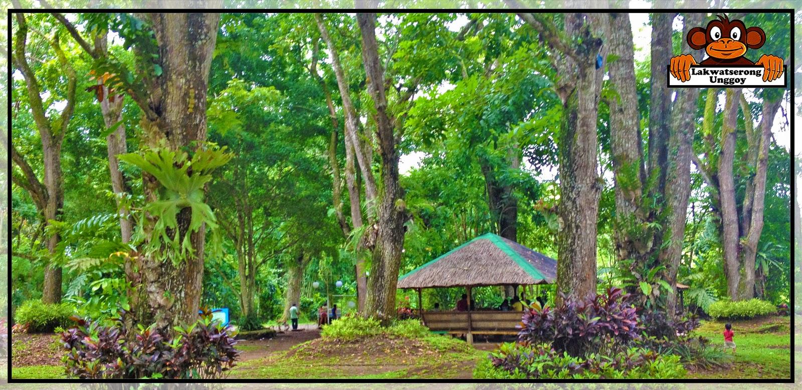 lakwatserong unggoy diy solo trip davao city day3