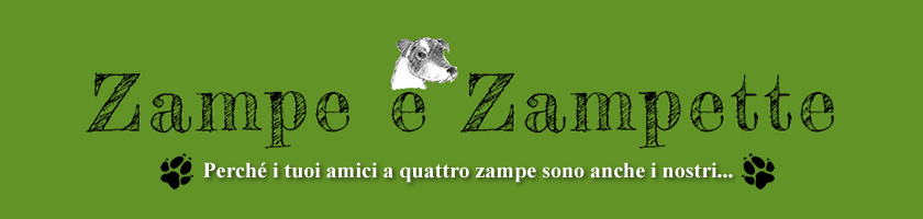 Dog sitter Firenze | Cat sitter | Pet therapy | Educazione cinofila Firenze | Educatore puppy class