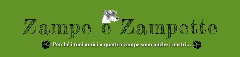 Dog sitter Firenze | Cat sitter | Pet therapy | Educazione cinofila Firenze | Educatore puppy class