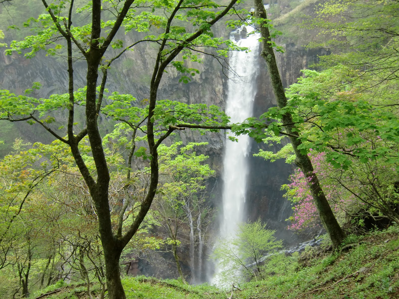 Kegon Waterfall, Suicide Most Beautiful Places in Japan