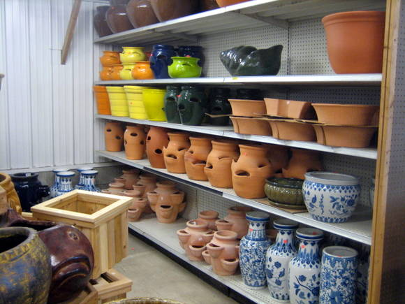how to pick out a flower pot
