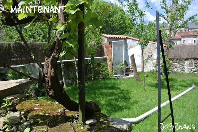 terrain, tonte, semis, installations, exterieure