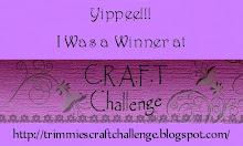 C.R.A.F.T. Challenge Winner