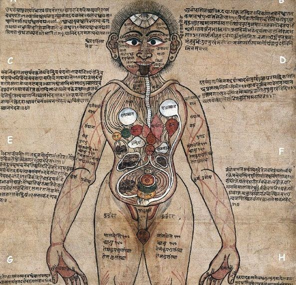 Rare Painting Anatomical Man Sanskrit Ayurveda