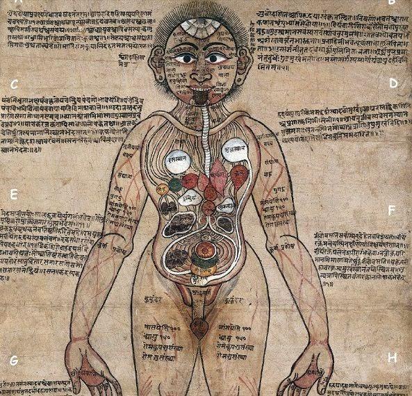 Rare Painting Anatomical Man Sanskrit Ayurveda