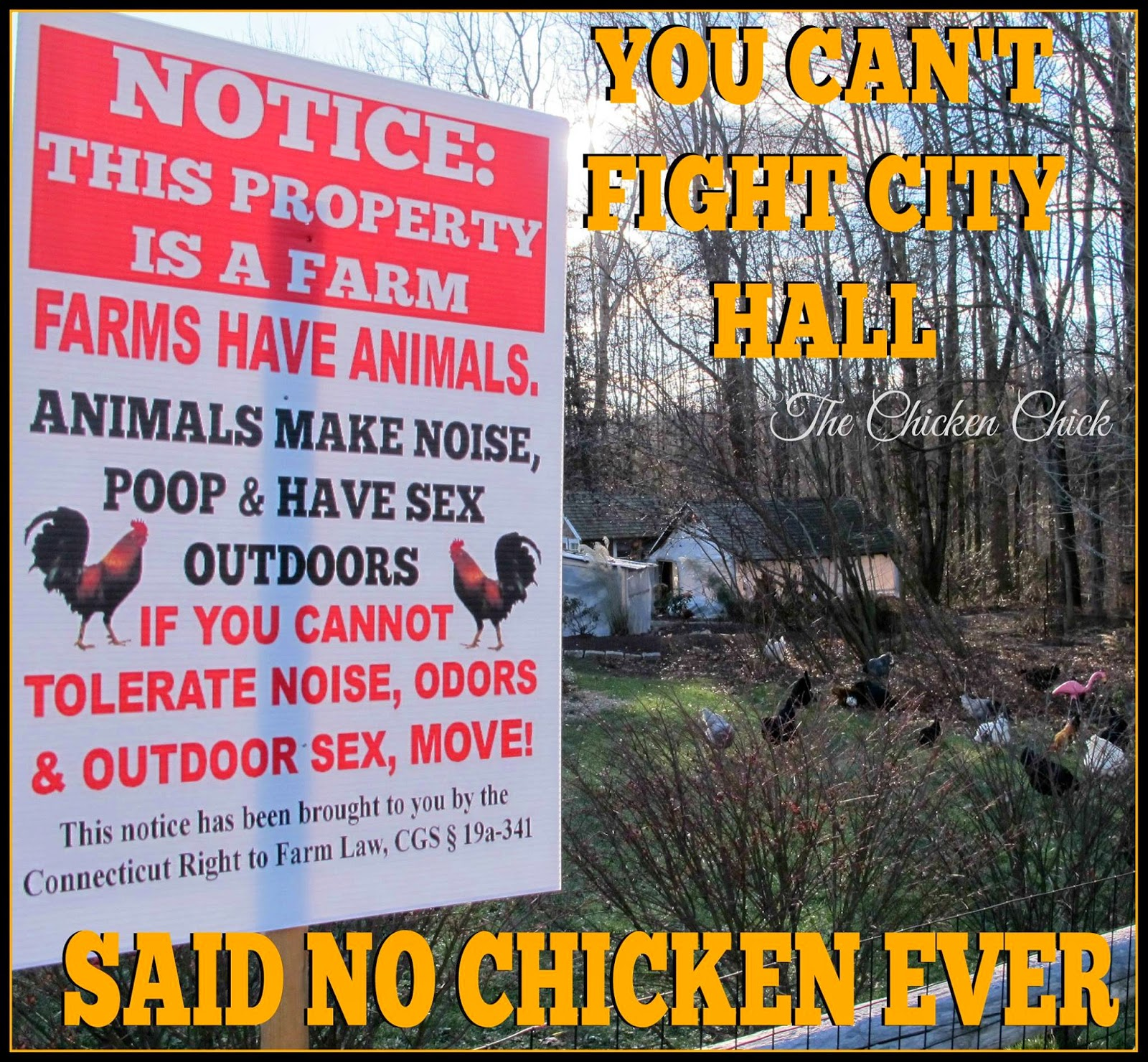 You can't fight City Hall...Said No Chicken EVER.