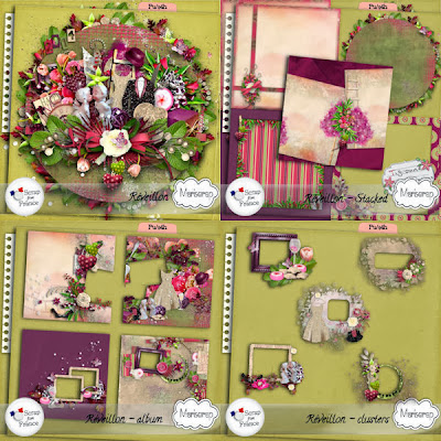 http://scrapfromfrance.fr/shop/index.php?main_page=product_info&cPath=88_91&products_id=4686