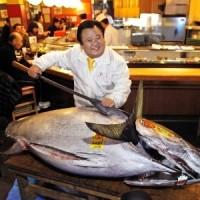 Atum azul é vendido por preço recorde de R$ 3,58 milhões em Tóquio