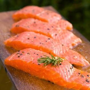 salmon-gubug-informasi