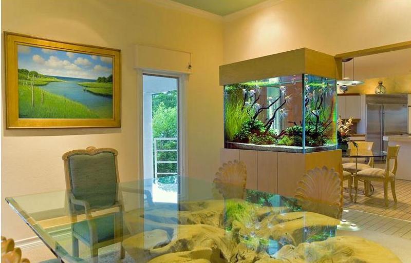 la vie de mon aquarium placer son aquarium. Black Bedroom Furniture Sets. Home Design Ideas