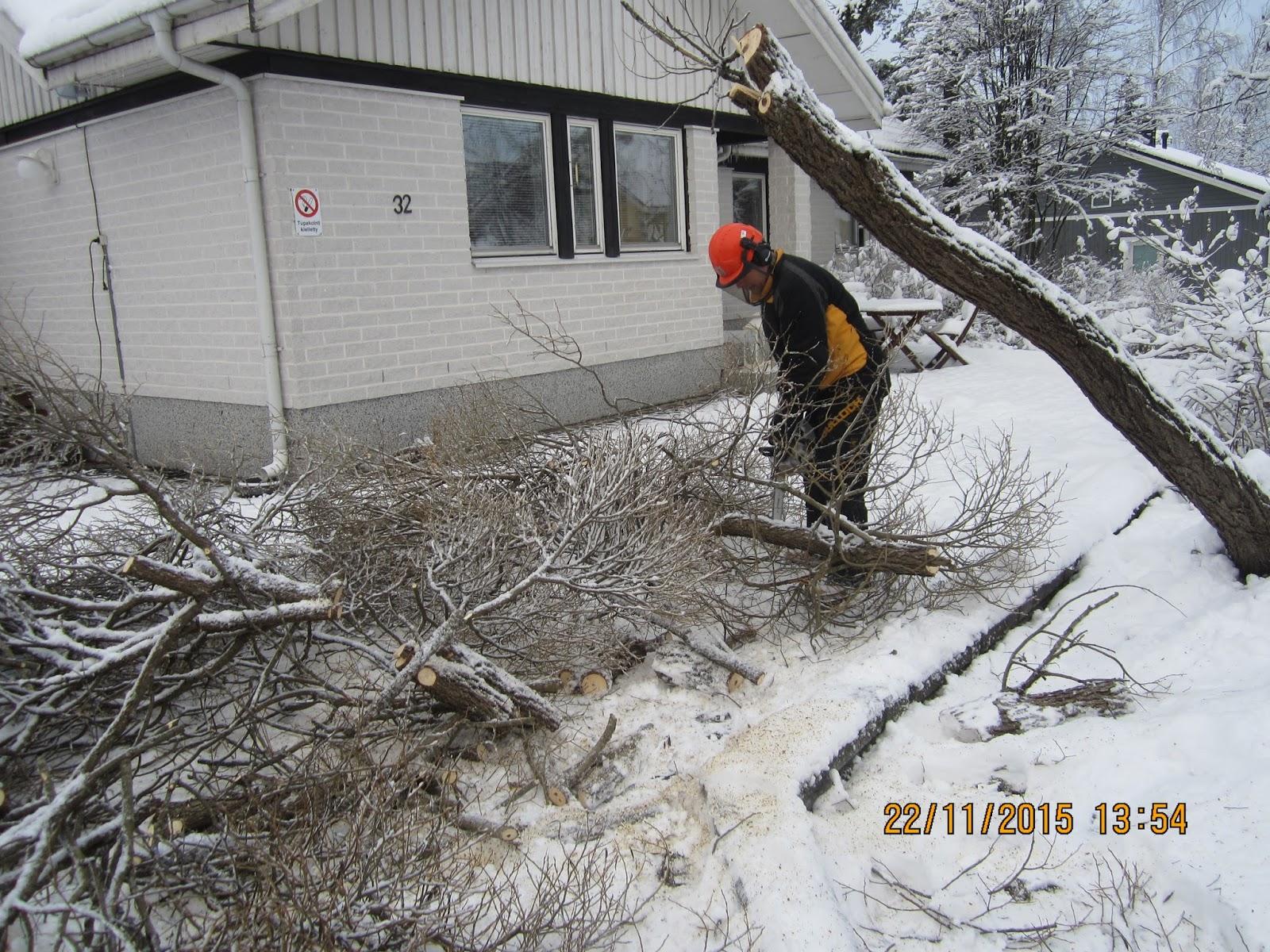 Talkkaripalvelut lumenluonti puunkaato tavoitettavissa sähköpostin kautta Tampereella