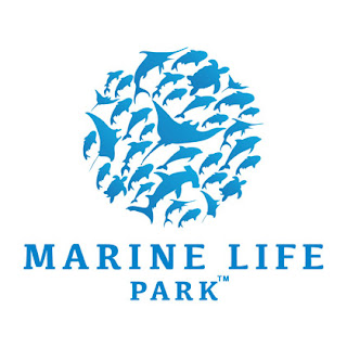 Hot Theme Parks: Marine Life Park (MLP) Singapore To Be Opened ...