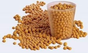 Khasiat Luar Biasa Kacang Kedelai untuk Kesehatan