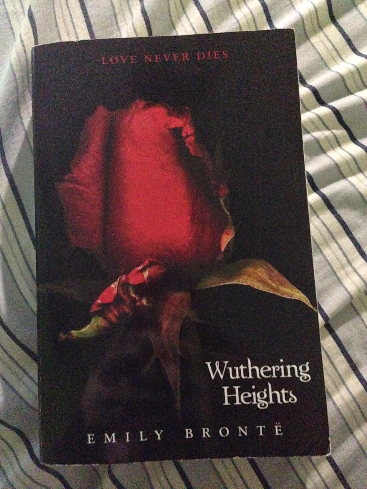 domesticity in the novel wuthering heights by emily bronte The novel wuthering heights comes as a do the homes in wuthering heights support or criticise victorian ideals about domesticity describe emily bronte's.