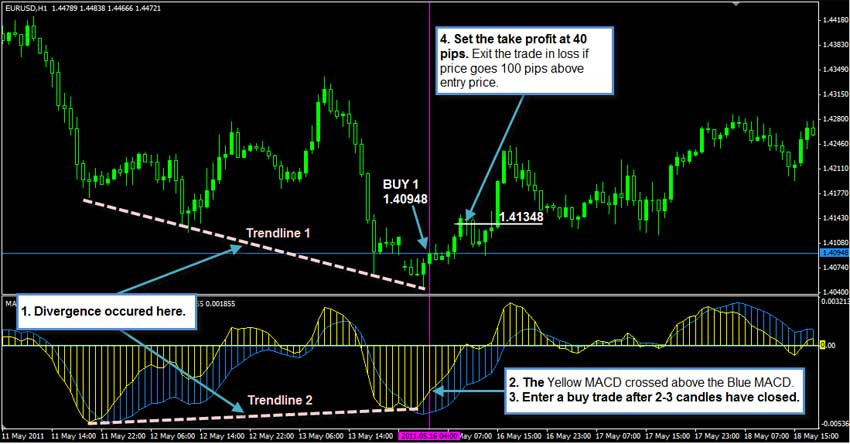 1 hour forex swing trading system