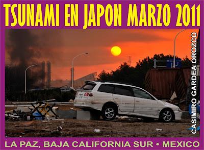 TSUNAMI Y TERREMOTO EN JAPON