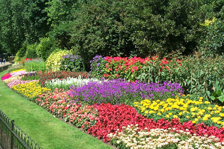 Flower Garden Design Ideas The Gardening