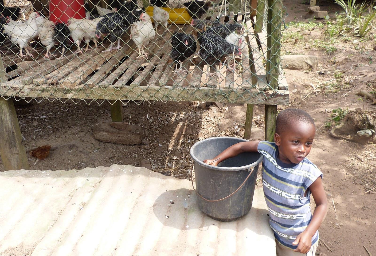 Notes From Ghana The Farmer S Farmer