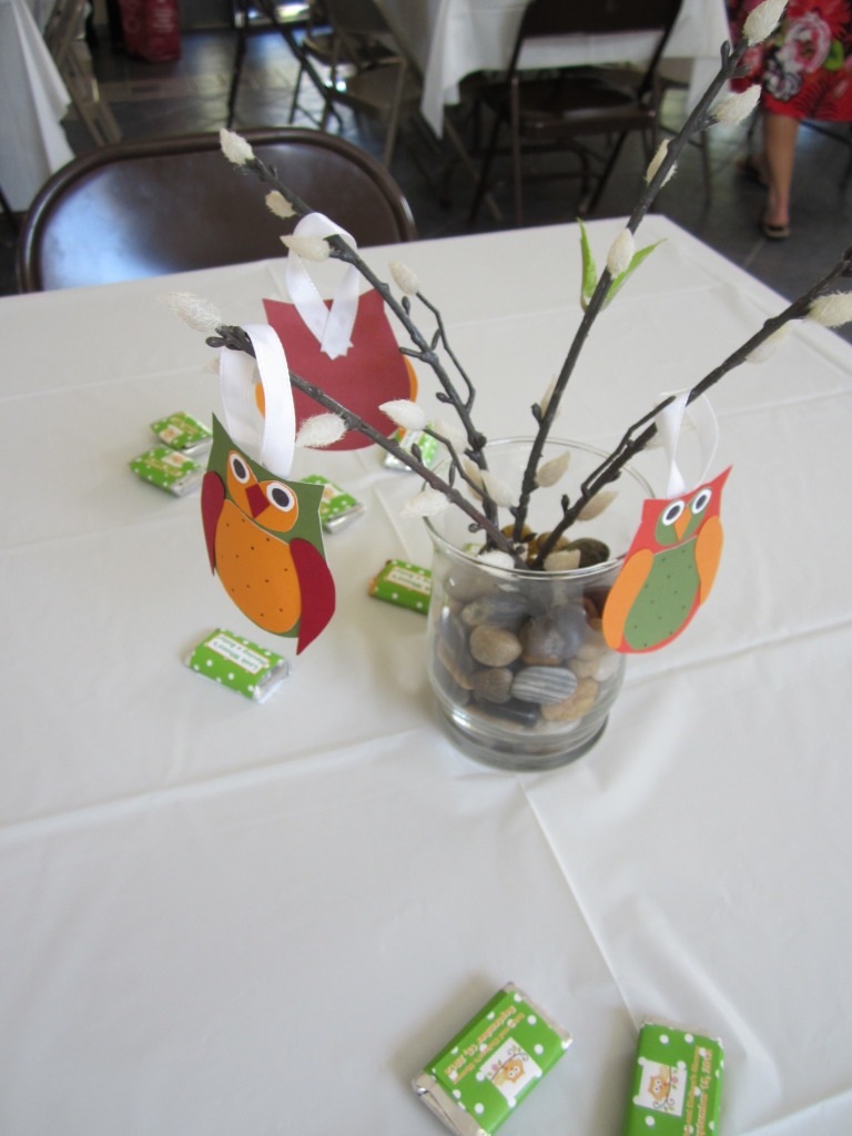 one craft short of crazy owl themed baby shower
