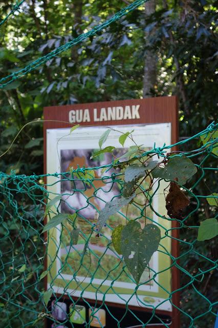 Gua Landak, Langkawi