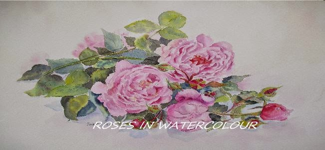 ROSES IN WATERCOLOUR Beatrice Cloake