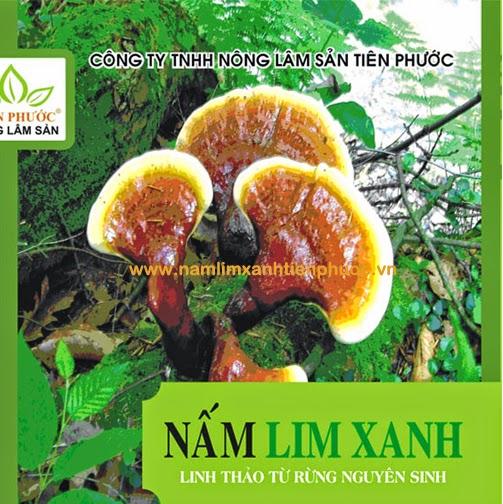 Vỏ hộp sản phẩm nấm lim xanh của Công ty TNHH Nông lâm sản Tiên Phước