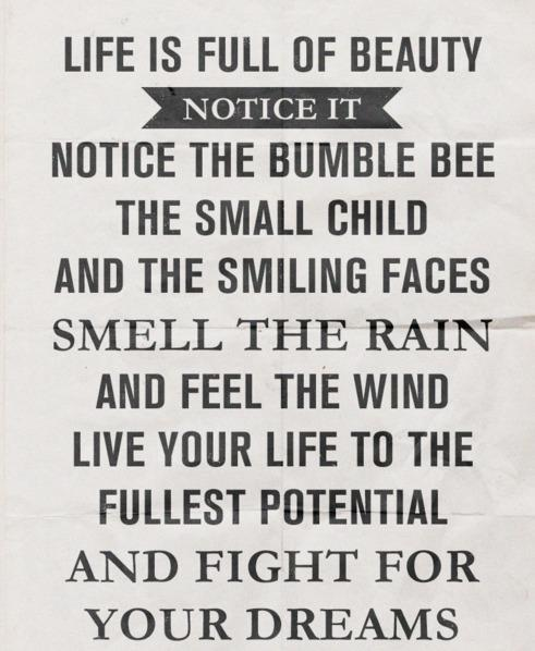 life inspiration quotes life is full of beauty