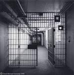 NEPFHE - Educação Encarcerada