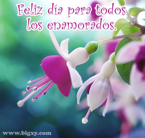 Amor De Amistad 24 Imagenes De Amor Corazones Flores Y Mensajes