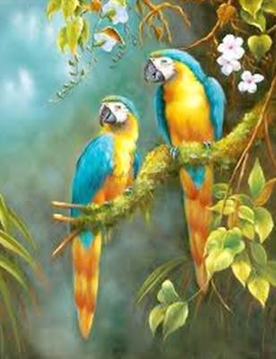 pájaros-al-oleo