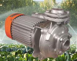 Kirloskar Single Phase Monoblock Pump 50x40 KDS-235 (2HP) Online | Pumpkart.com