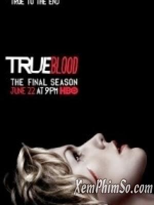 Thuần Huyết 7 - True Blood 7