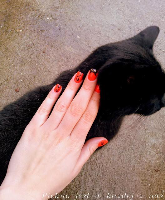 Manicure kocie łapki