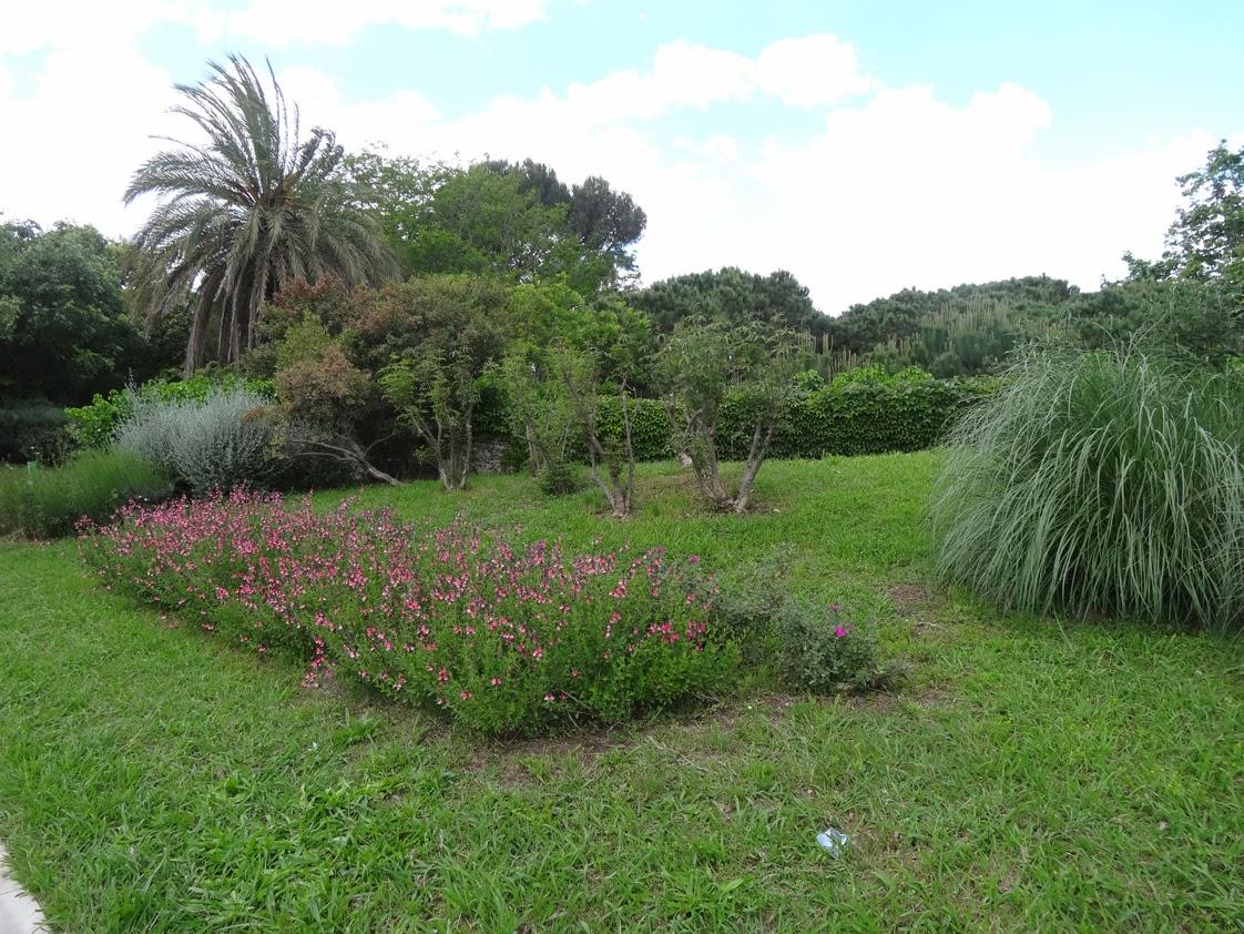 Veo veo 3 jardins de joan brossa 1 a 17 for Jardines de joan brossa