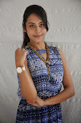 Khenisha Chandran at Jaganatakam press meet-thumbnail-9