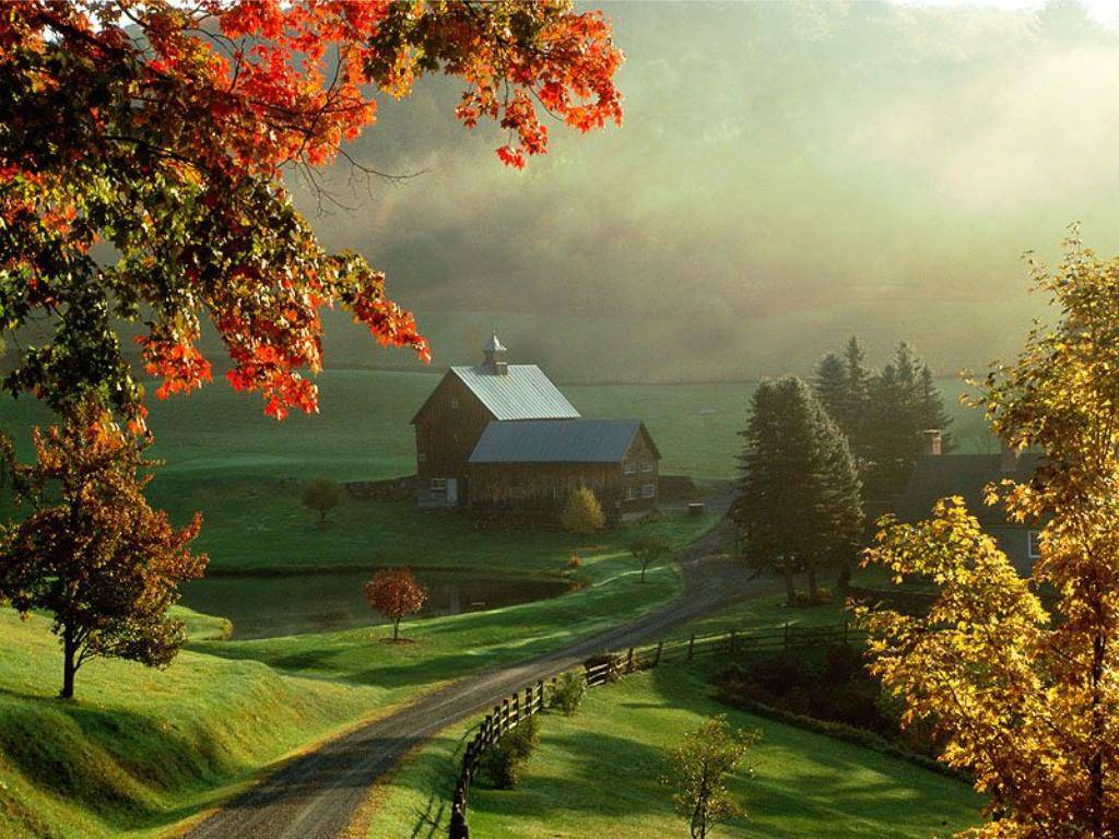 http://2.bp.blogspot.com/-OiLSFq80uFo/TevaWhxCN3I/AAAAAAAACMA/hHAegNp03rM/s1600/Autumn%20Wallpapers.jpg