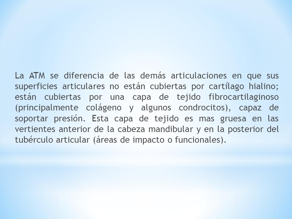 ANATOMÍA DE LA ATM | Cirugía II
