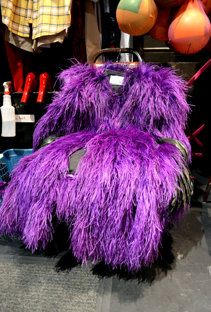 priscilla broadway show costume