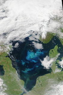 NORTH SEA WITH BLOOMING PHYTOPLANKTON
