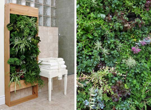 Rent to blog inspiring vertical gardens for small for Vertical garden wall systems