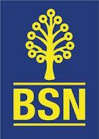Jawatan Kosong Bank Simpanan Nasional