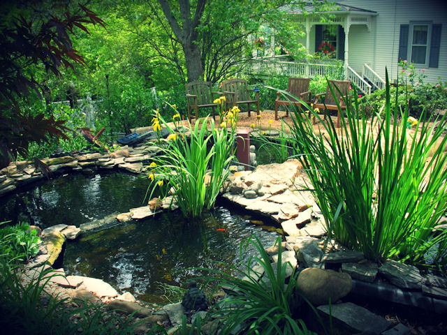 Three ponds for guests to enjoy with their morning coffee, or a book at The Claiborne House B&B of Virginia