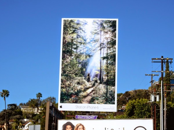 Shot on iPhone 6 forest billboard