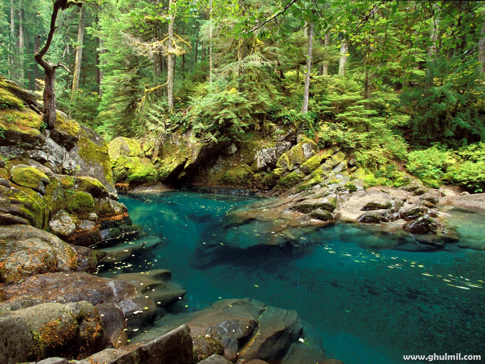 http://2.bp.blogspot.com/-OjeafynY6SY/UEvTrzNG8FI/AAAAAAAAADw/b_gjlhGsKGg/s1600/natural-scenery-or-blue-lake-wallpaper.jpg