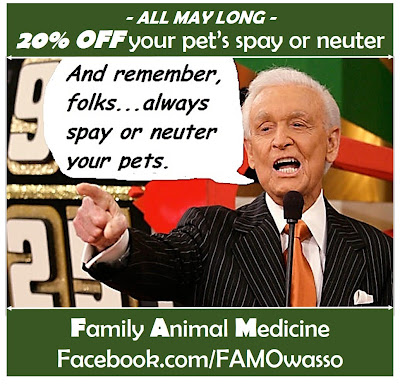 family animal medicine, owasso vet, animal hospital, discount spay neuter
