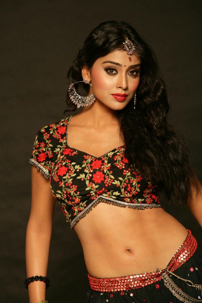 Shriya Saran1 - Shriya Saran Hot Photo Shoot Pics